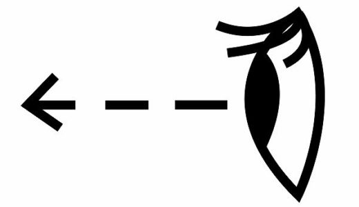 見ると観るの違い!作品・動物・星・アニメはどっちを使う?