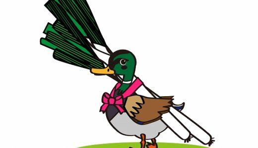 鴨が葱を背負って来るの意味・語源・例文・類語・対義語を徹底解説!