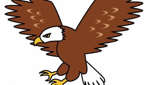 「トンビが鷹を生む」の意味や例文を解説!逆のことわざもあるけれど