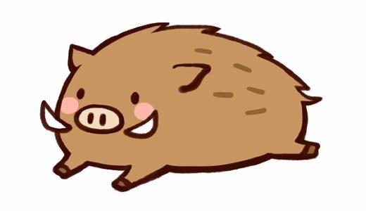 猪突猛進の意味・使い方・類語・対義語!いい意味で使われることはある?